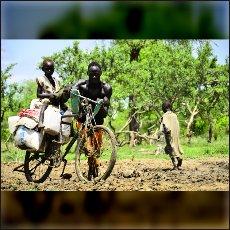 Kolo je v deževni dobi boljše transportno sredstvo kot terenska vozila, ker se je z njim mogoče izogniti največjemu blatu.