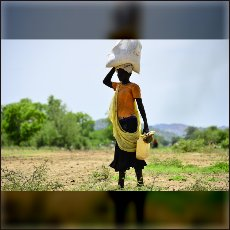 Most food is transported on the heads of women and girls.