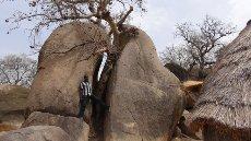 Razpočen granitni balvan v vasi Kau